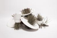 58_porcelaine-vegetale-2.jpg