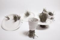 58_porcelaine-vegetale-3.jpg