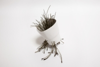 58_porcelaine-vegetale-5.jpg